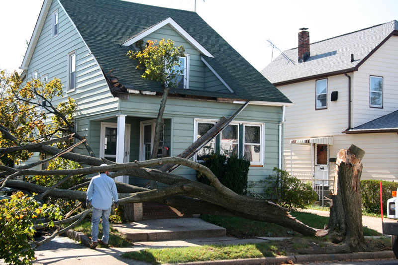 How to Reduce Wind Damage